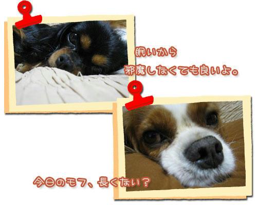 2010-09-17-4.jpg