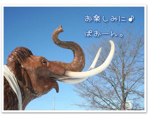 2011-01-02-01.jpg