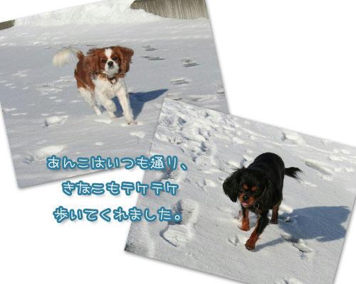 2011-01-02-03.jpg