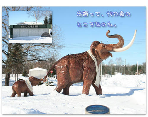 2011-01-02-04.jpg