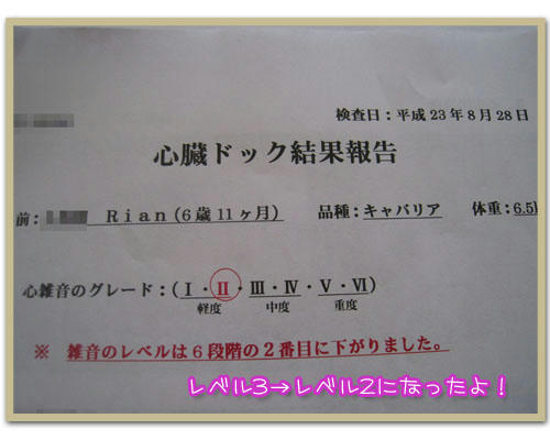 20110828-02.jpg