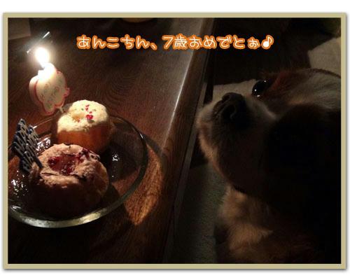 2011-09-13-01.JPG