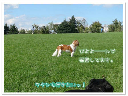 2011-09-25-05.JPG