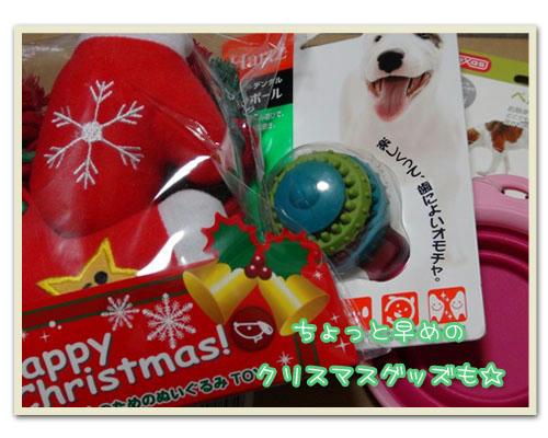 2011-12-01-01.JPG