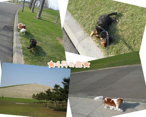 2012-04-21-05.jpg