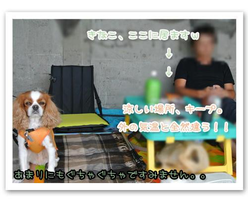 2012-08-14-02.jpg