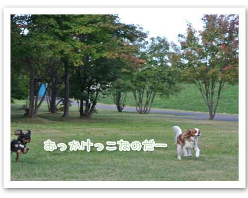 2012-10-08-01.JPG