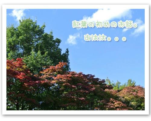 2012-10-08-03.JPG