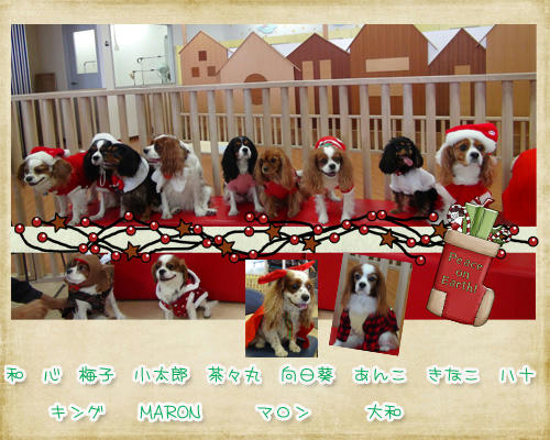 2012-12-01-shuugou.jpg