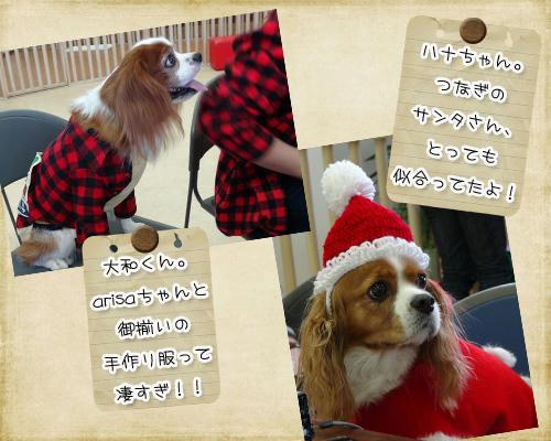 2012-12-01-09.jpg