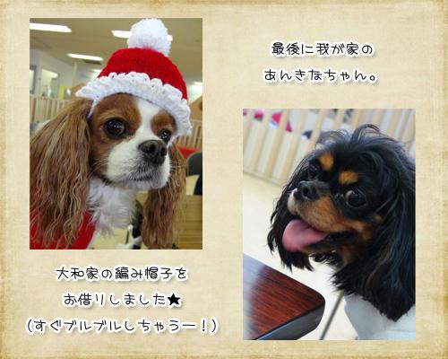 2012-12-01-11.jpg
