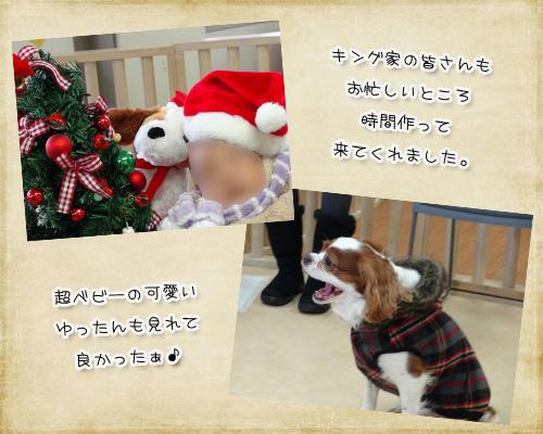 2012-12-01-10-1.jpg