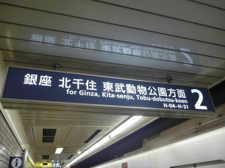 P1150142.JPG
