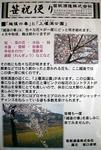 笹祝便り平成19年5月