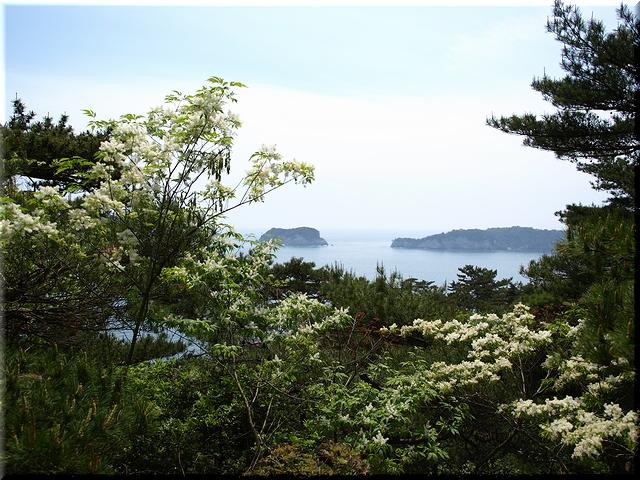 木ノ島&唐戸島