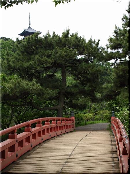寒霞橋&三重塔