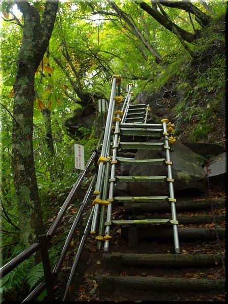 一部はこんな階段も…