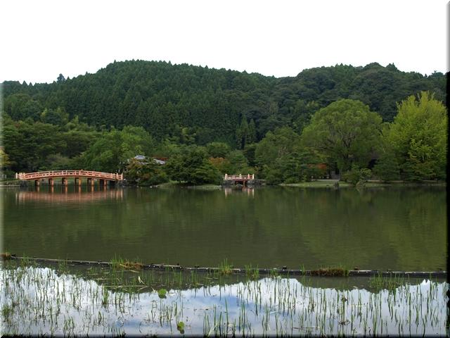 池の東岸より