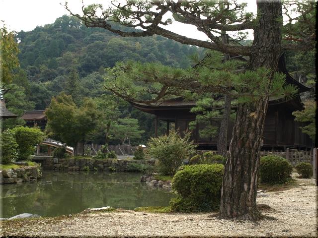 臥龍池越しに見る虎渓公園