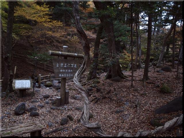上部写真の湧水場