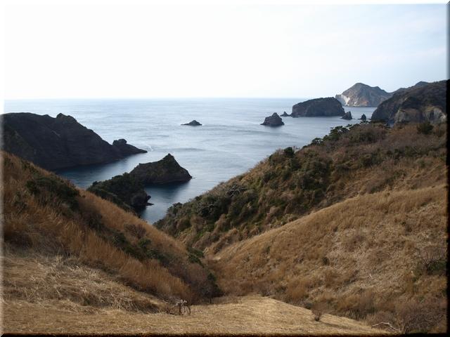 大根島(写真左部)