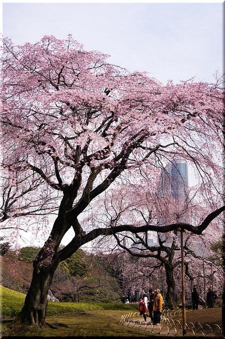 東京ドームホテルを背景に
