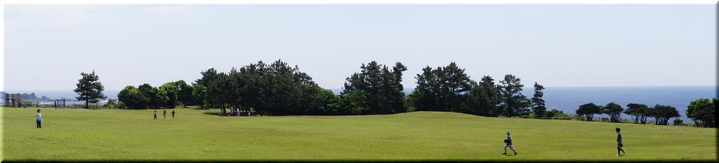 望楼の芝生