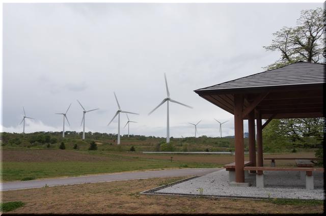 母屋から眺める風車