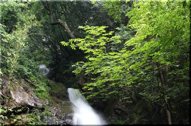 滝壺から見た滝口