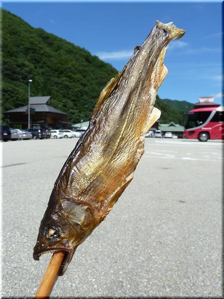 鮎の塩焼き(小)