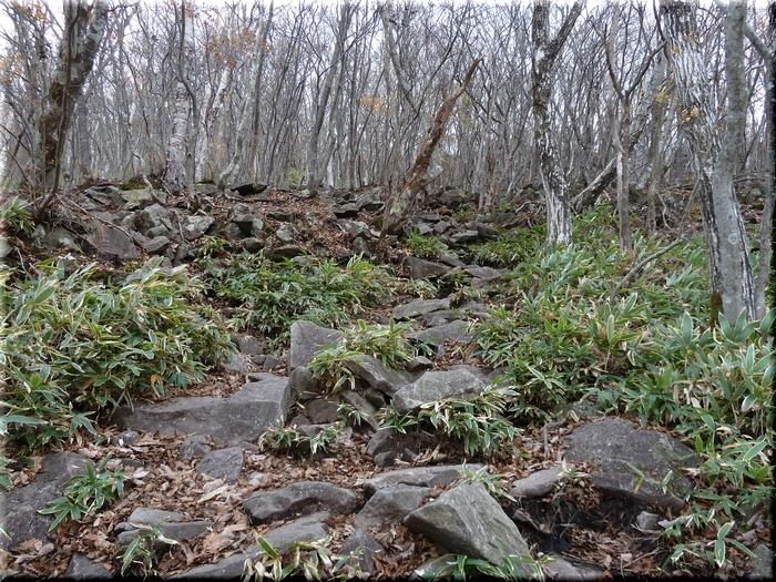 岩の多い登山道