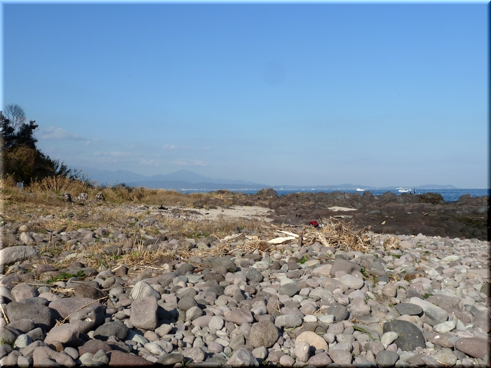 相模湾越しに眺める大山