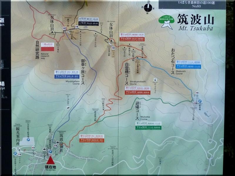 ルート案内図