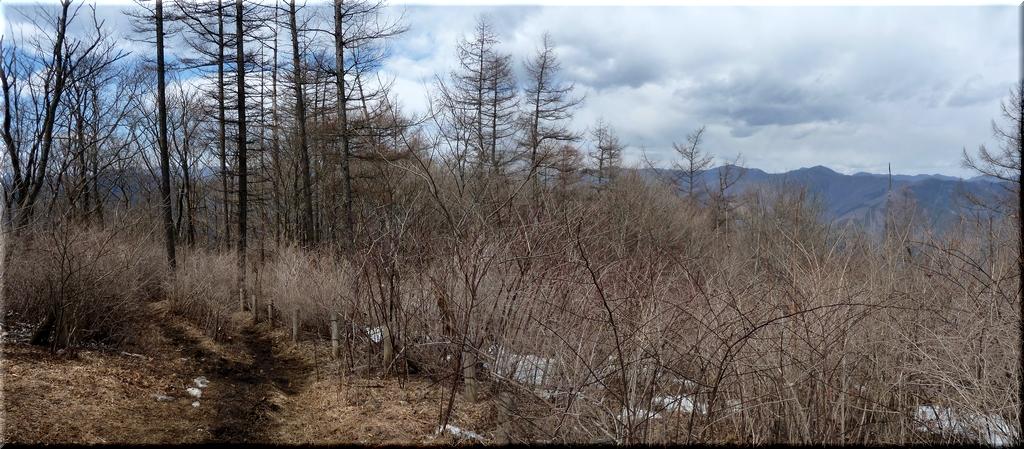 御前山からの眺め