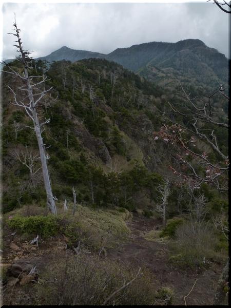 左側のとんがりが庚申山
