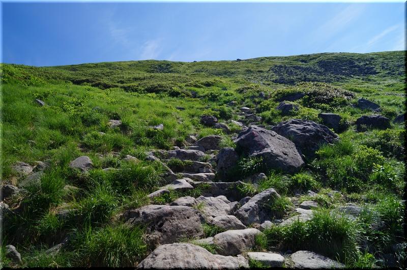 山頂までの斜面