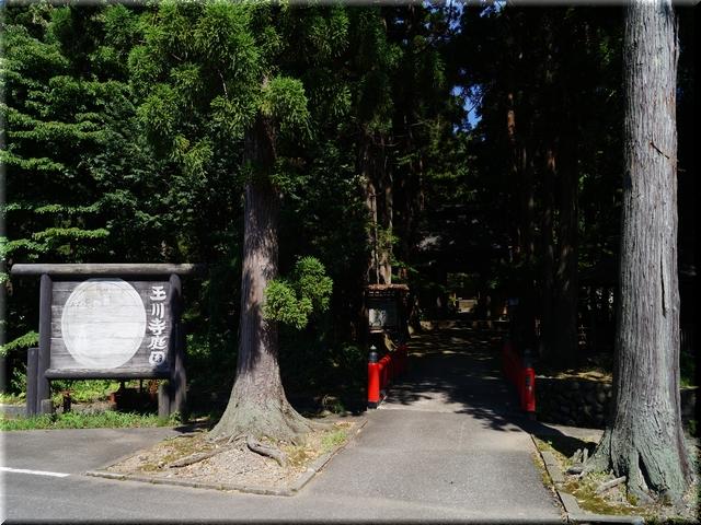 玉川寺庭園