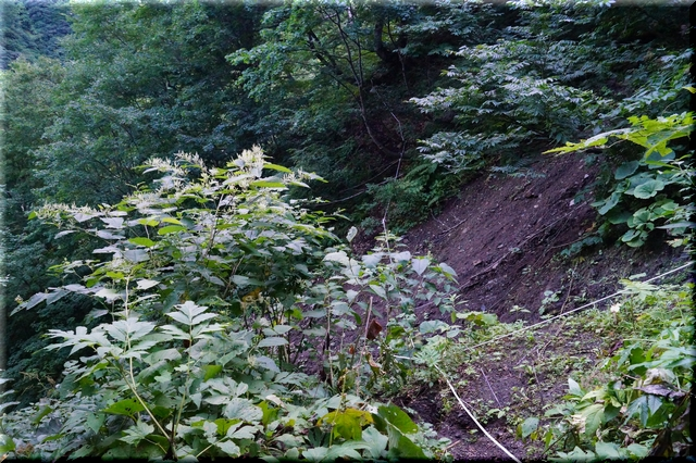 土砂崩れ箇所