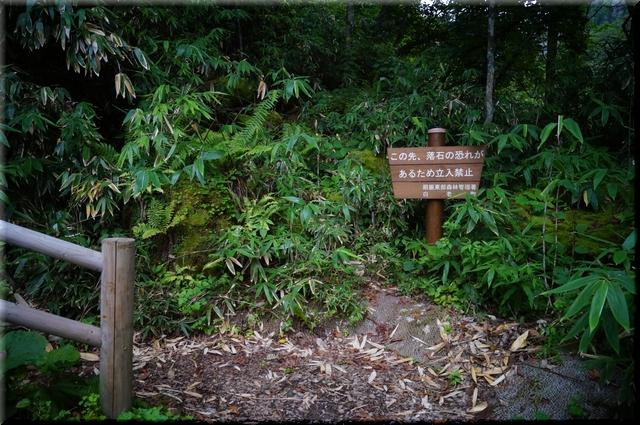 滝壺までの入り口