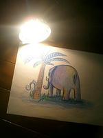 Elephant SANTIE/Artmic8neo