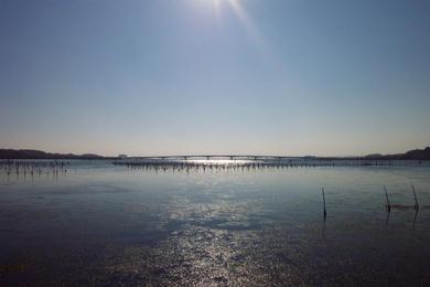 うみ(浜名湖)を望む