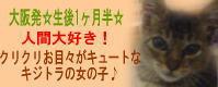 eringisatooya2.jpg
