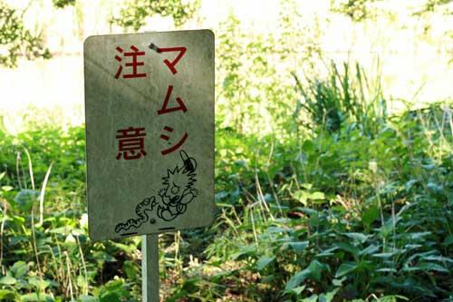 tsubo9.jpg