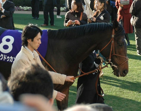 ロックドゥカンブ@有馬記念