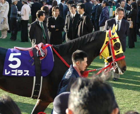 レゴラス2007年有馬記念