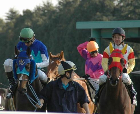 松籟ステークス2006