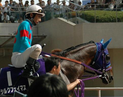 シルクフェイマス@2005年宝塚記念