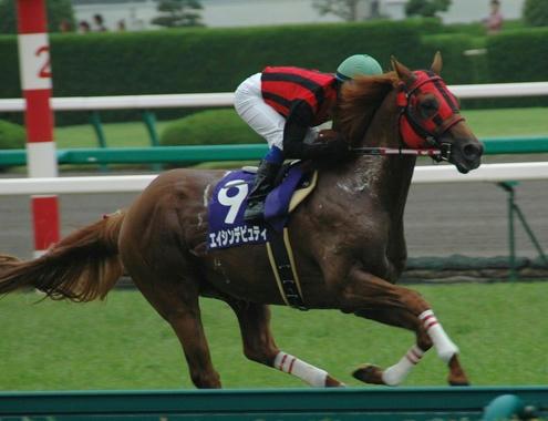 2008年宝塚記念のエイシンデピュティ