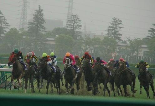 2008年宝塚記念