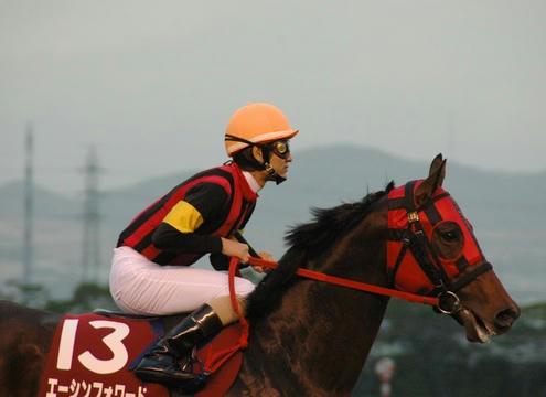エーシンフォワード@阪神カップ2008
